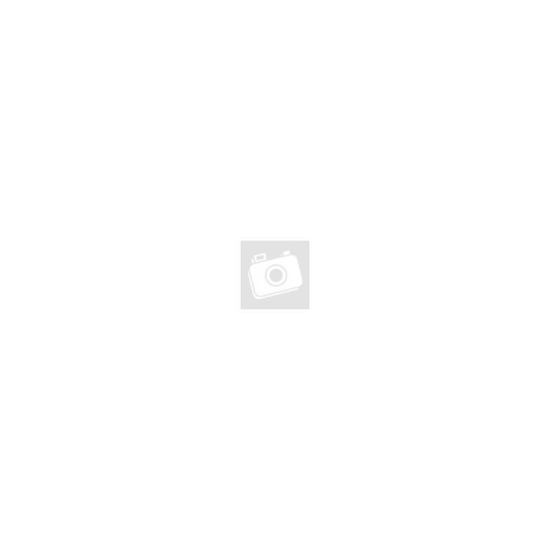 Buddha kép (kék)